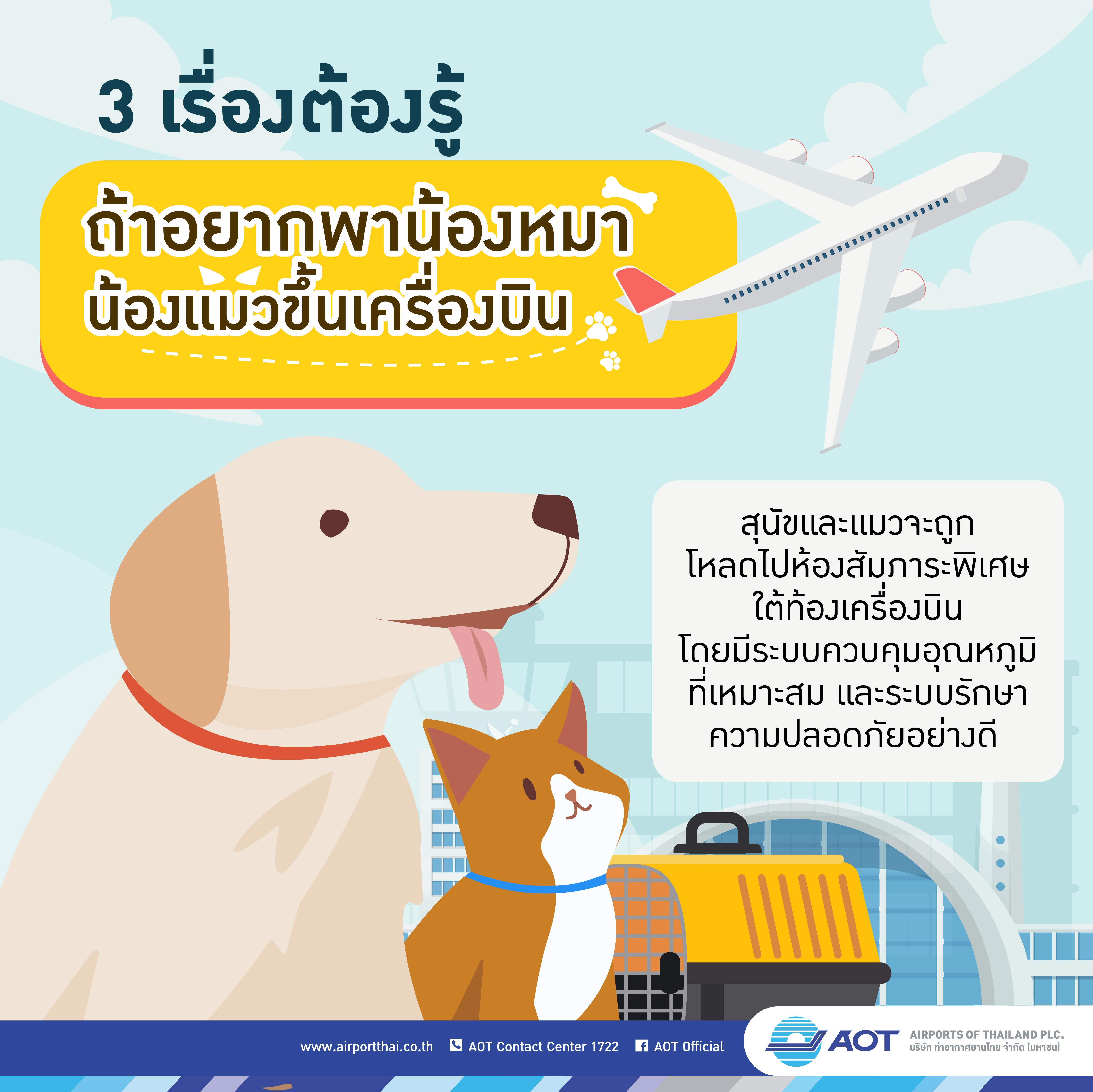 AOTcontent2019_Infographic_17_วิธีการนำสัตว์เลี้ยงร่วมเดินทางโดยเครื่องบิน_V2_20190805_Page-01