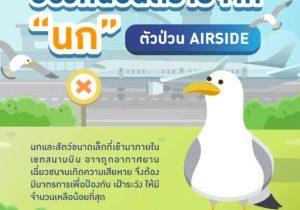 AOT_infographic13_Airport Bird Control_01
